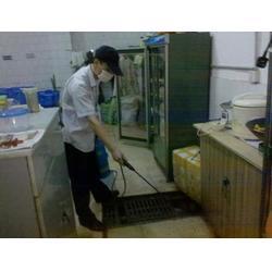 白蚁防治如何收费|杀虫灭鼠保格利控虫|青山湖区白蚁防治图片
