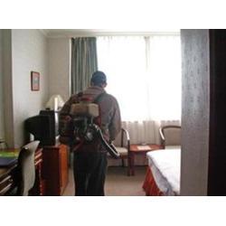 省人民医院杀虫灭鼠_南昌消毒老鼠_如何杀虫灭鼠图片