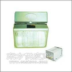 专业生产防眩应急通路灯CGT9730防眩应急通路灯图片