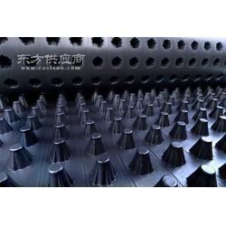 排水板厂家华北排水板厂家图片