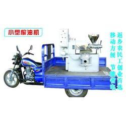 株洲芝麻榨油机,东恒机械,家庭小型芝麻榨油机图片