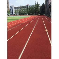 惠州透气型塑胶跑道 透气型塑胶跑道每平米 广州帝森图片
