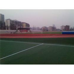 广州帝森(图)_硅PU球场材料品牌_沈阳硅PU球场图片