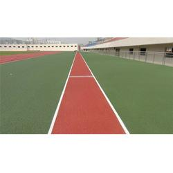 广州帝森(图),塑胶跑道材料工程,漯河塑胶跑道图片