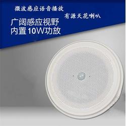 带音源有源吸顶喇叭功率-惠智普科技-有源吸顶喇叭功率图片