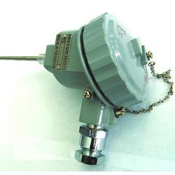 【防爆热电阻】、防爆热电阻WZP-641、天康仪表图片