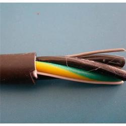 硅橡胶电缆、硅橡胶电缆、天康仪表(查看)图片