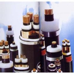 高温控制电缆,高温控制电缆型号,天康仪表图片