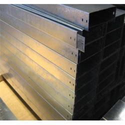 梯级式电缆桥架,梯级式电缆桥架公司,天康仪表图片