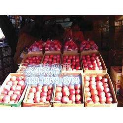 供应亳州土豆冷库400吨需要投资多少图片