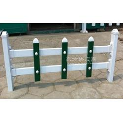 PVC塑钢绿化护栏花园草坪栅栏别墅园艺围栏道路花草pvc防护栏图片