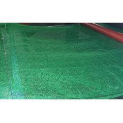 三维网垫,三维土工网垫首选鹏跃,福建三维网垫图片