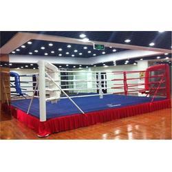 拳击台_猛龙体育用品_销售拳击台图片