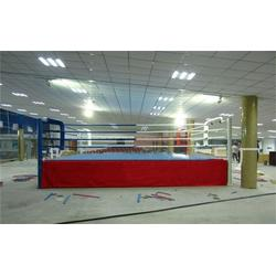 山东省拳击台,落地式拳击台,猛龙体育用品(优质商家)图片