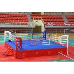 拳击台厂家|拳击台|猛龙体育用品图片
