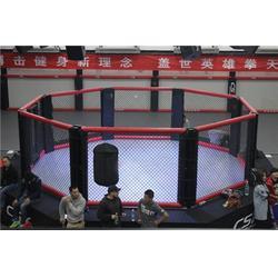 山东省八角笼、猛龙体育用品、八角笼供应商图片