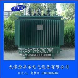 配电变压器S11-1600/10变压器S11-1600KVA参数图片