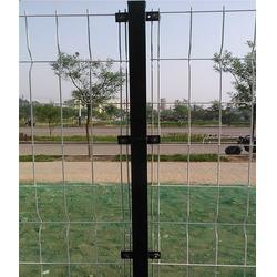 唯佳金属网护栏网厂家(图)|护栏网网片规格|护栏网图片
