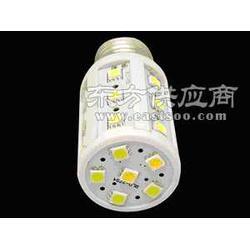 24V12v直流电压声控LED节能灯图片