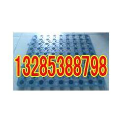 标准2公分20mm高蓄排水板厂家13285388798图片