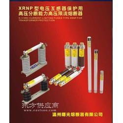专业生产各种高压熔断器XRNT XRNP RN图片