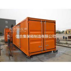 信合集装箱专业生产静音集装箱 特种集装箱图片