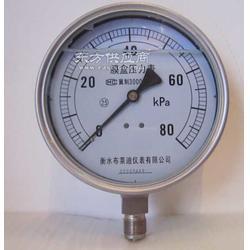 布莱迪厂家专业生不锈钢耐震膜盒压力表YEN150F图片