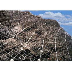 防护边坡网、兴顺发筛网(在线咨询)、丽江防护边坡网图片
