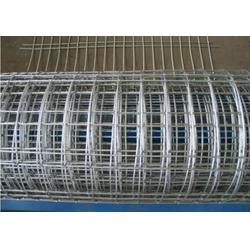 昆明电焊网_兴顺发电焊网(在线咨询)_pvc电焊网厂图片