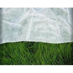 农用无纺布、无纺布防虫网、瑞信图片