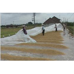 农用无纺布、农用无纺布农用膜、瑞信图片