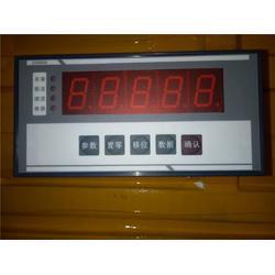 BZ2046-T型微控制器|阜阳控制器|潍坊科艺电子批发