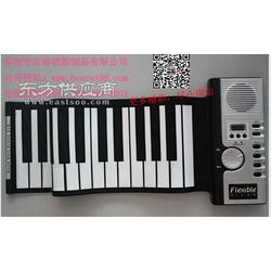 高音质版博锐钢琴博锐电子琴电钢琴图片
