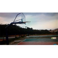 儿童专用篮球架工厂、优质品牌(在线咨询)、梅江区篮球架工厂图片