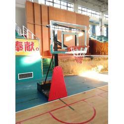 移动单臂篮球架厂家-篮球架厂家-绅道体育原厂供应(查看)图片