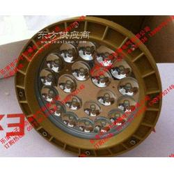 GCD613-20X免维护LED防爆灯 20w吸顶式防爆led照明灯图片