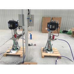 固瑞克(图)、压盘泵生产厂家、湛江压盘泵图片