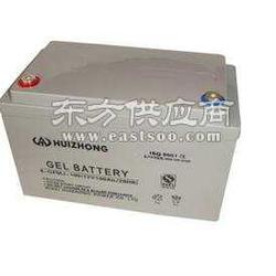 酸免维护蓄电池图片