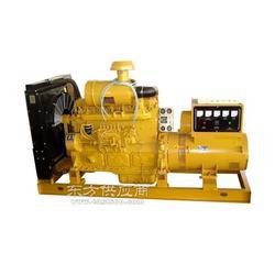柴油发电机组 200kw 无刷 上柴发电机组图片