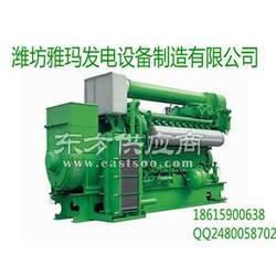 燃气发电机组雅玛发电机 30KW燃气发电机组图片