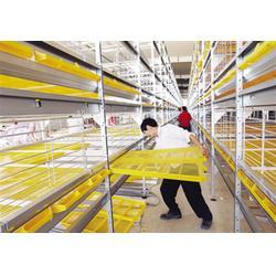 山东蛋鸡笼加工厂|万隆(在线咨询)|山东蛋鸡笼图片