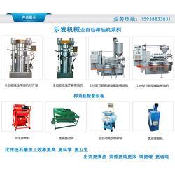 乐发哈纳榨油机、南阳螺旋榨油机自动、南阳螺旋榨油机图片