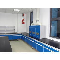 德州实验室家具厂家-实验室家具供应商-广州越狮图片