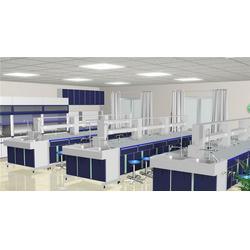 实验室家具厂家 越狮工业优质商家 实验室家具厂家报价