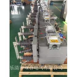 专业生产ZW20-12真空断路器 ZW20-12图片