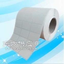 供应低温冷库专用标签纸图片