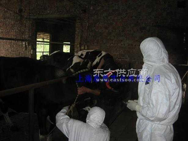 杜邦畜牧动物防疫服/畜牧检疫防护服价格