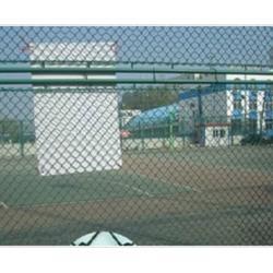 体育场围网厂家 宝创金属丝网(在线咨询) 体育场围网图片