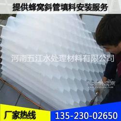 工业污水沉降用蜂窝斜管填料 专业供应50mm六角蜂窝斜管图片