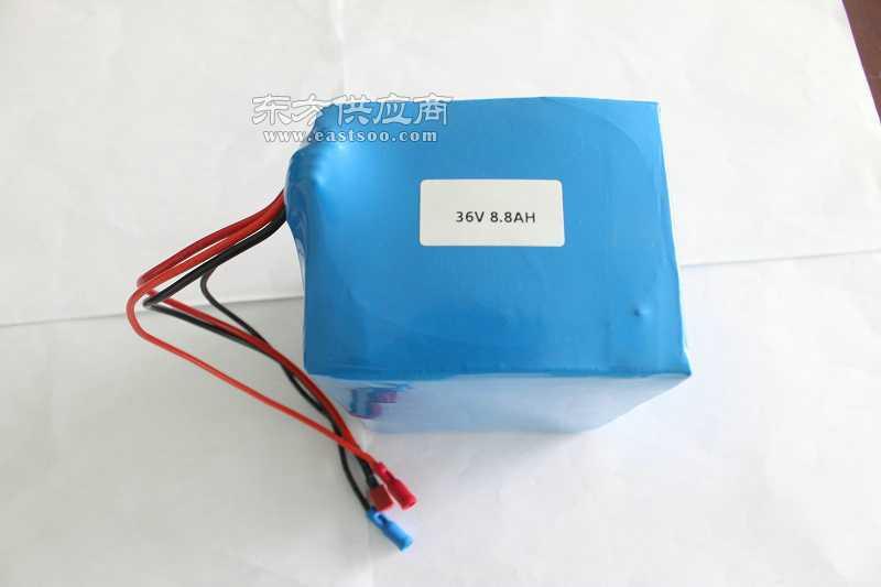 36v18650锂电池组 36v电动车电池图片